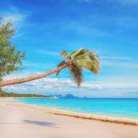 Mediatone vous souhaite de bonnes vacances !