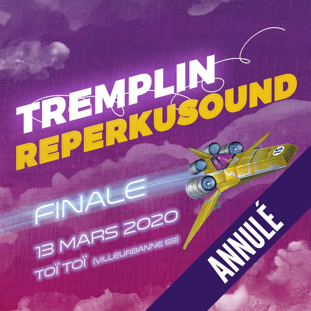 Tremplin REPERKUSOUND 15 au TOI TOI LE ZINC